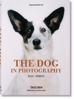 Изображение The Dog in Photography 1839–Today