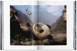 Picture of National Geographic. Asia & Oceania