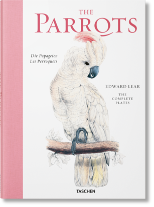 Picture of Edward Lear. The Parrots