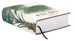 Picture of Martius. The Book of Palms