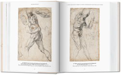 Picture of Michelangelo. The Graphic Work