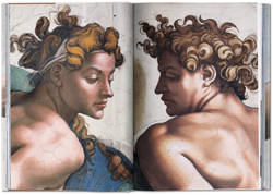 Picture of Michelangelo. Complete Works