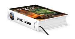 Picture of Living in Bali