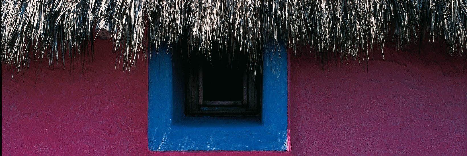 Picture of Living in Mexico