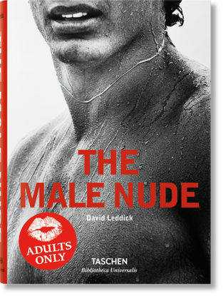 Picture of Male Nude
