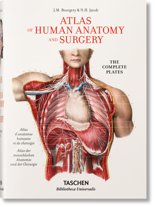 Picture of Jean Marc Bourgery. Atlas of Human Anatomy and Surgery
