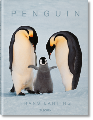 Picture of Frans Lanting. Penguin